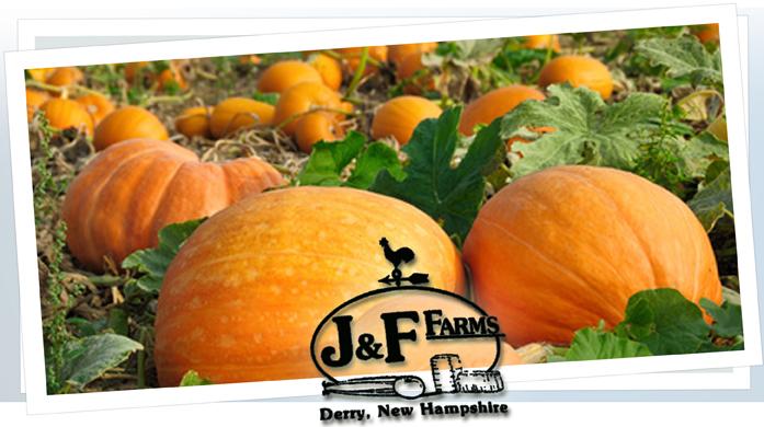 J & F Farms Pumpkins - Derry, NH