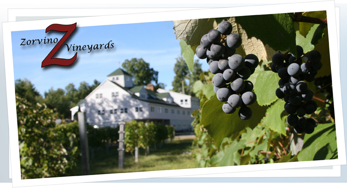 Zorvino Vineyards - Sandown, NH