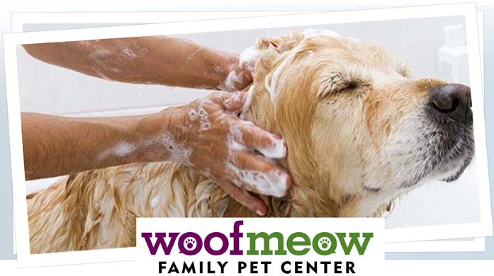 Woof Meow - WoofWashes