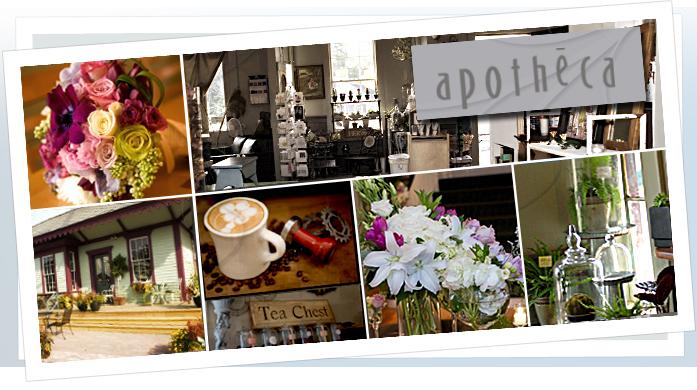 Apotheca Coffee